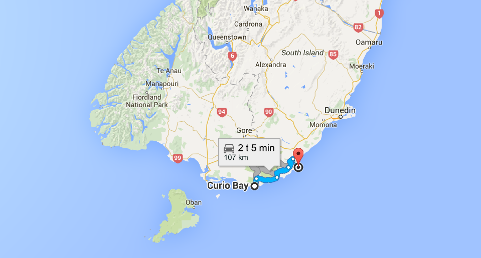 nugget_point_map
